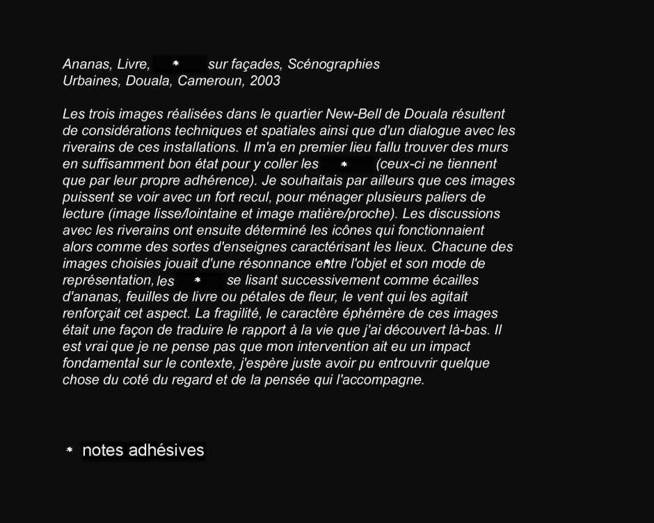 ananas-livrescenographies-urbaines-douala-cameroun-2003-copie